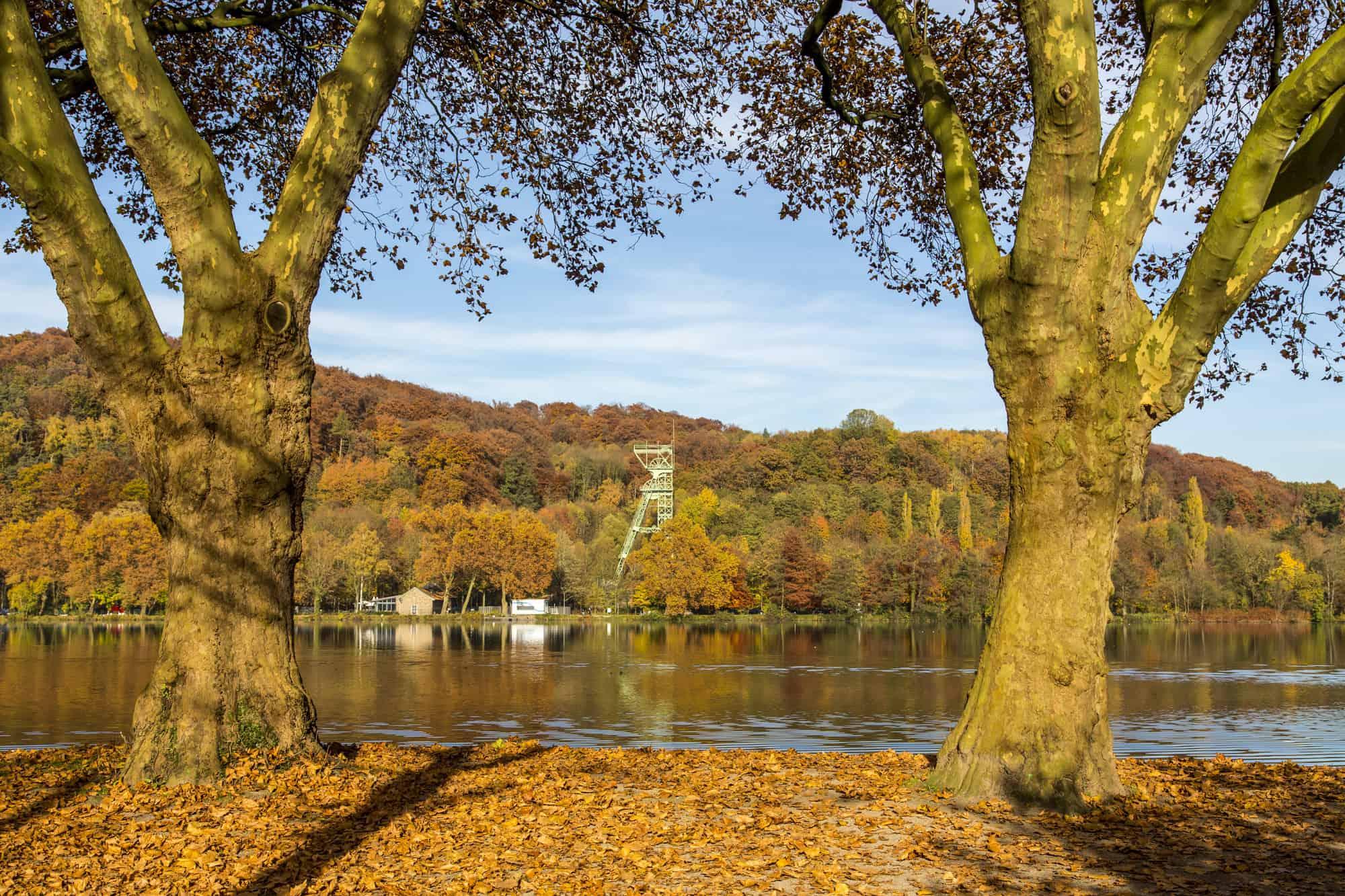 Der Baldeneysee in Essen, im Herbst, Fördergerüst der ehemaligen Zeche Carl Funke